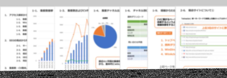 ビザップ分析・改善提案サービス